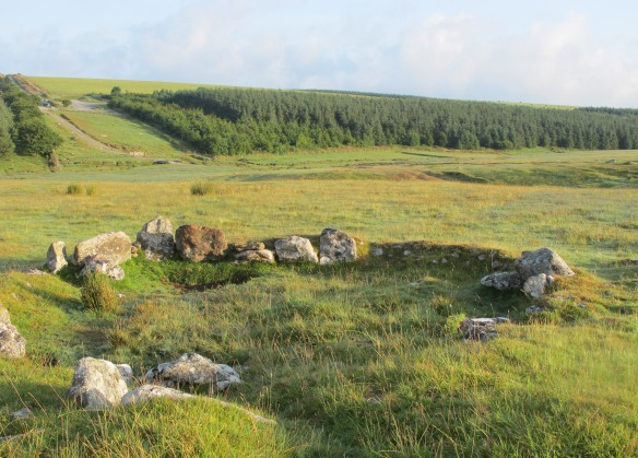 Irrelevant Photo: A hut circle near Rough Tor, part of a prehistoric settlement