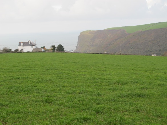 Irrelevant Photo: Cornwall's north coast