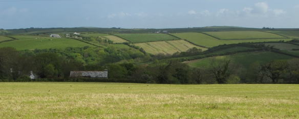 North Cornwall. Newly mown fields