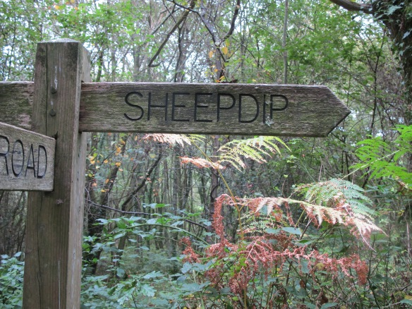 Irrelevant photo: a sign on a public footpath. If you want to get to Sheepdip, turn right.